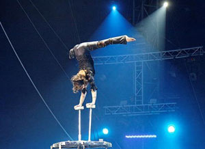 Spectacles et artistes de cirque