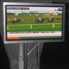 L'écran de diffusion pour l'animation cocktail courses hippiques