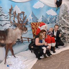 séance photo avec les décors arbres de Noël d'entreprise