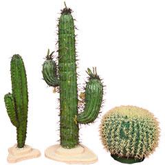 faux cactus en plastique